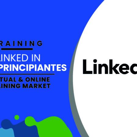 LinkedIn para principiantes